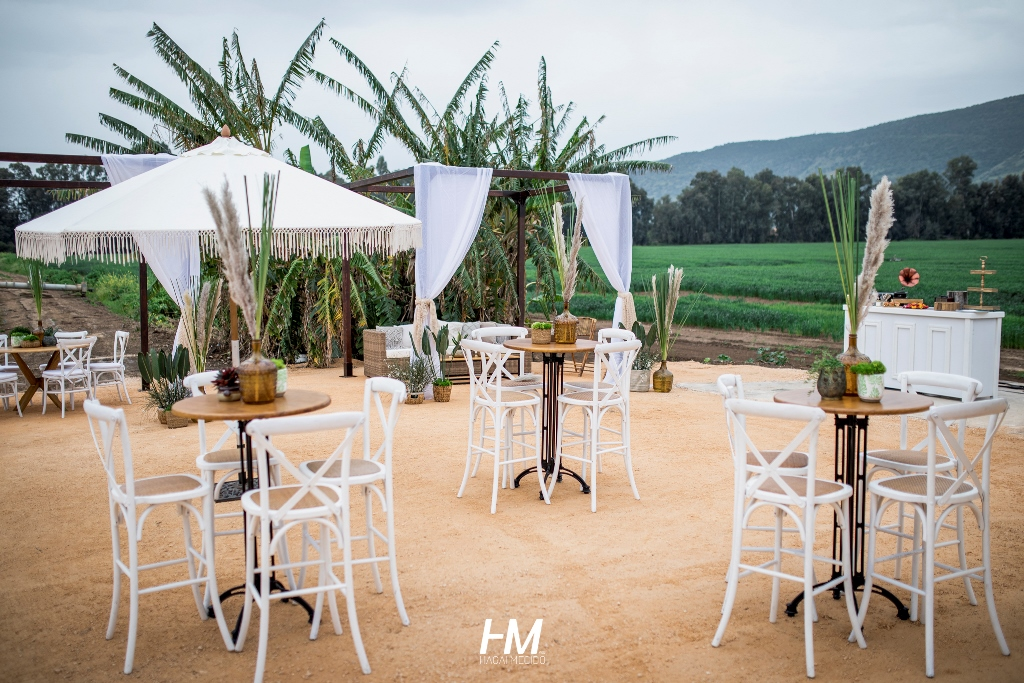 אירוע חברת משק   מתחם כפר בלום   פיין   אירוע מעוצב   גזירת סרט   חגי מגידו